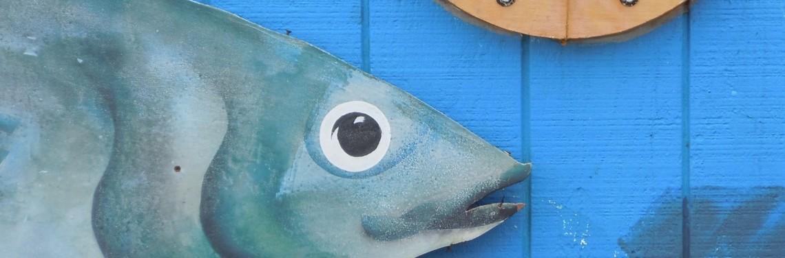 Newport Fish 3