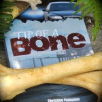 tip of a bone with bone