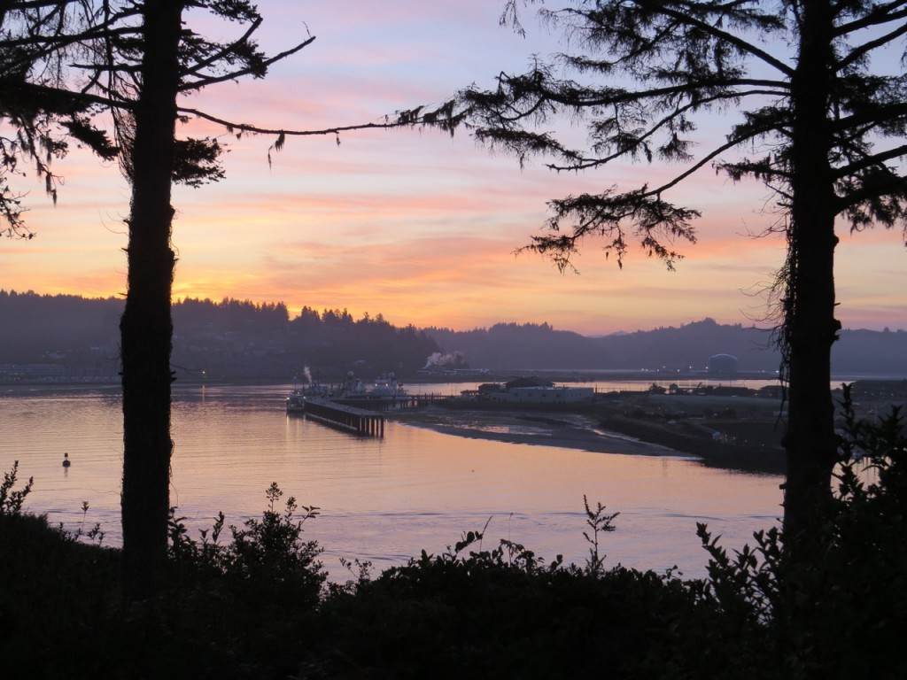 Newport, Oregon coast, Yaquina Bay, sunrise, Tip of a Bone