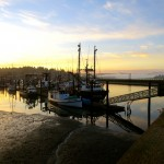 Newport, Oregon coast, fishing docks, sunrise, Tip of a Bone