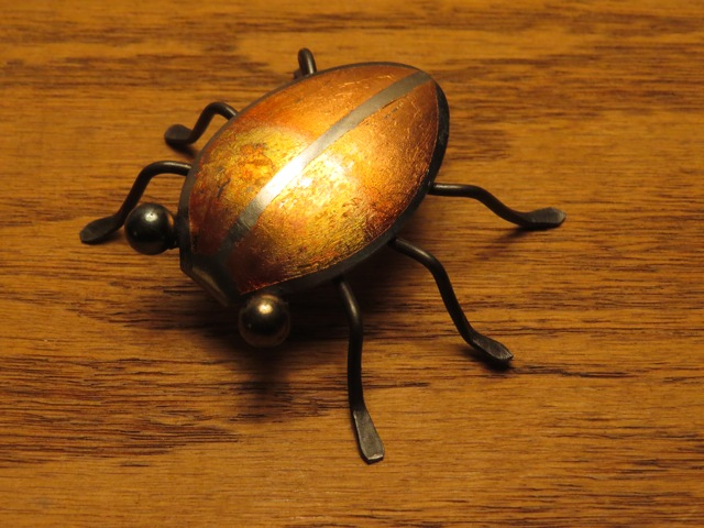 fb spoon bug